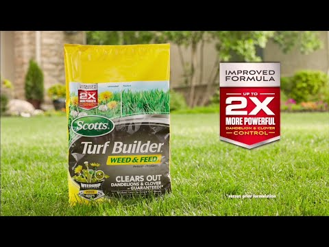How to Get Rid of Dandelions and Other Weeds using Scotts® Turf Builder Weed & Feed