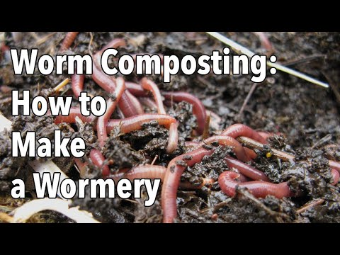 Worm Composting: How to Make a Wormery