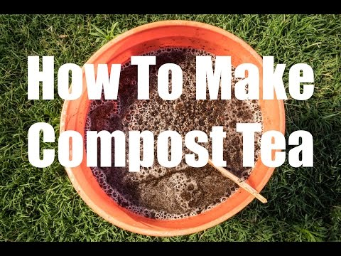 How to Make Compost Tea - Quick, Easy and FREE!