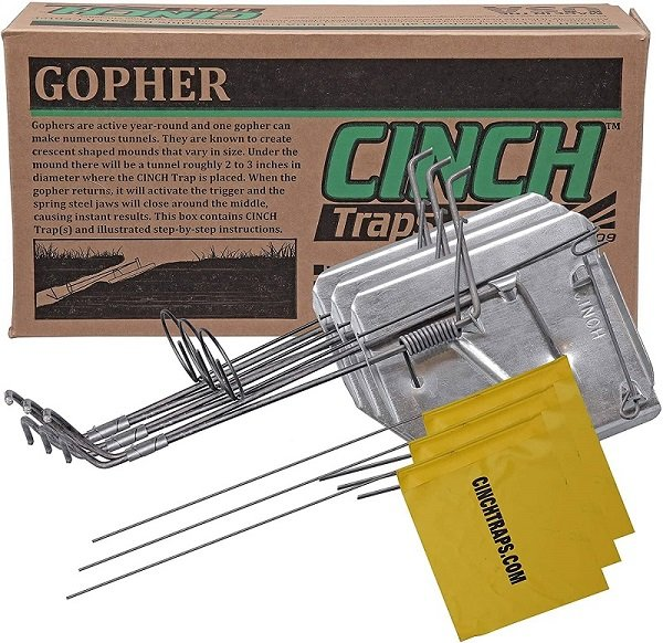 Best Gopher Traps