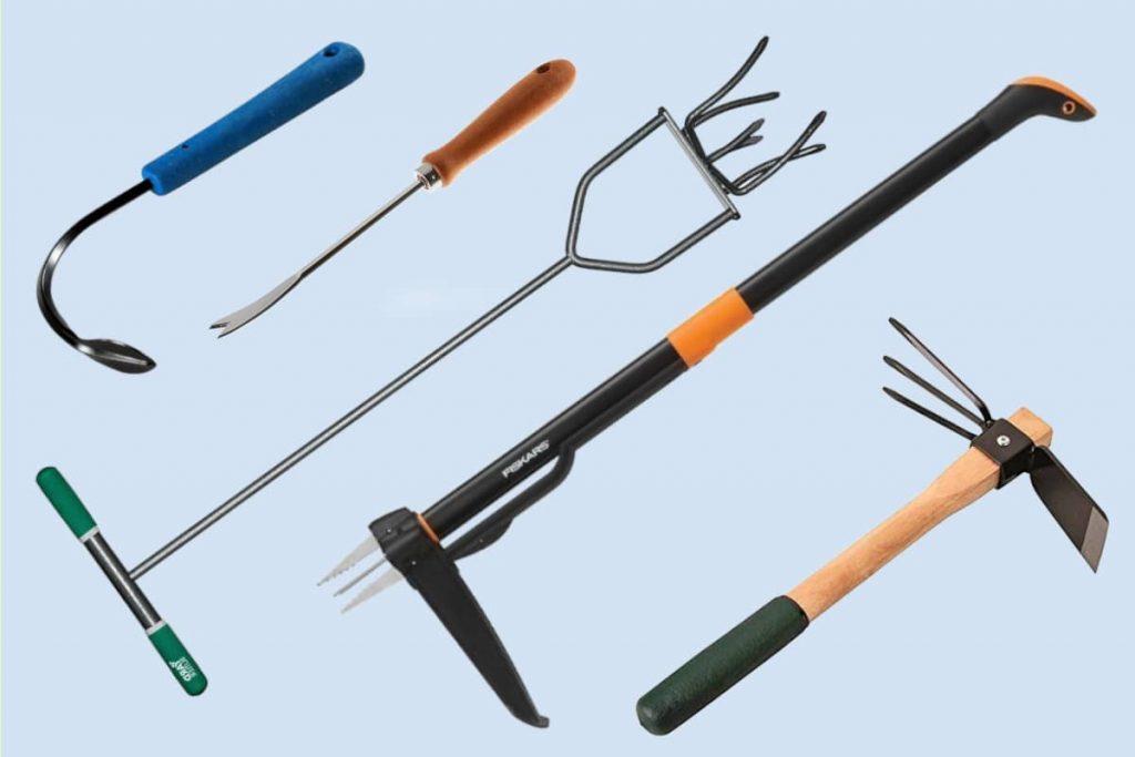 dandelion removal tool