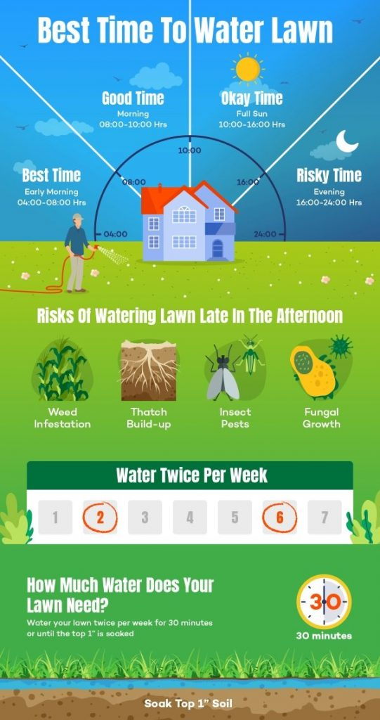Best Time to Water Lawn or Grass