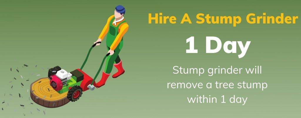 Hire a stump grinder