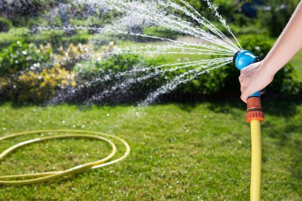 best time of day to water grass with hose