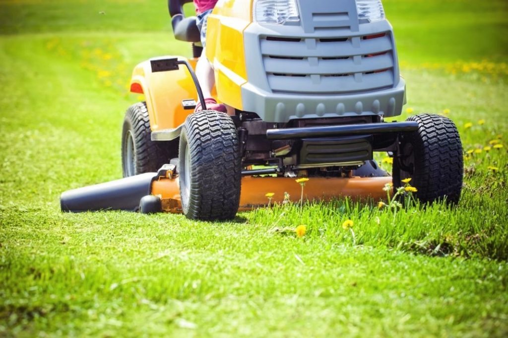 best time to mow lawn