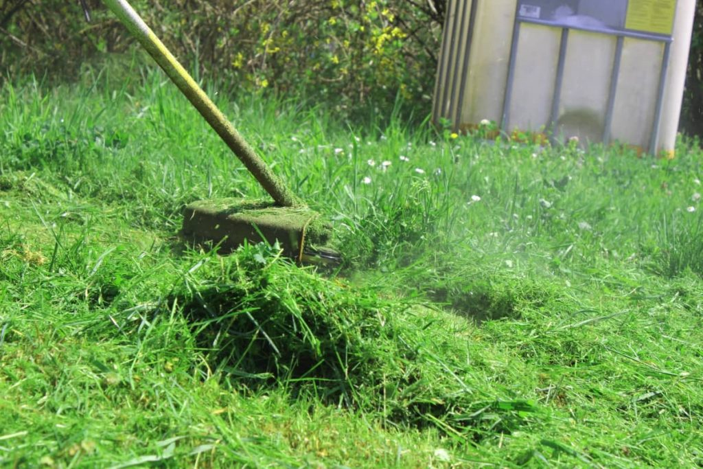how to cut extremely long grass