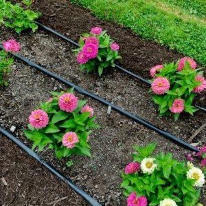 soaker hose flower bed