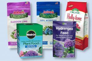 best hydrangea fertilizer