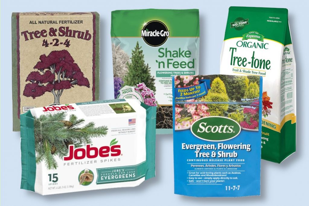 best fertilizer for trees and shrubs