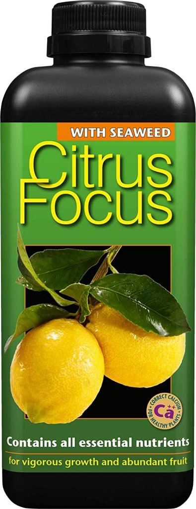 citrus focus fertiliser