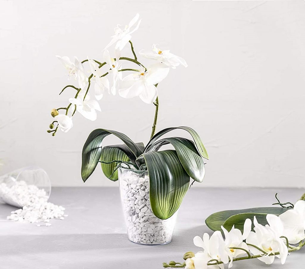 plaster-orchid-pot-with-gravel