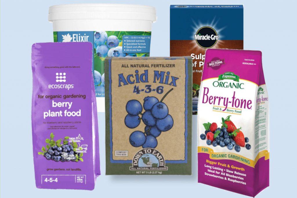 best blueberry fertilizers