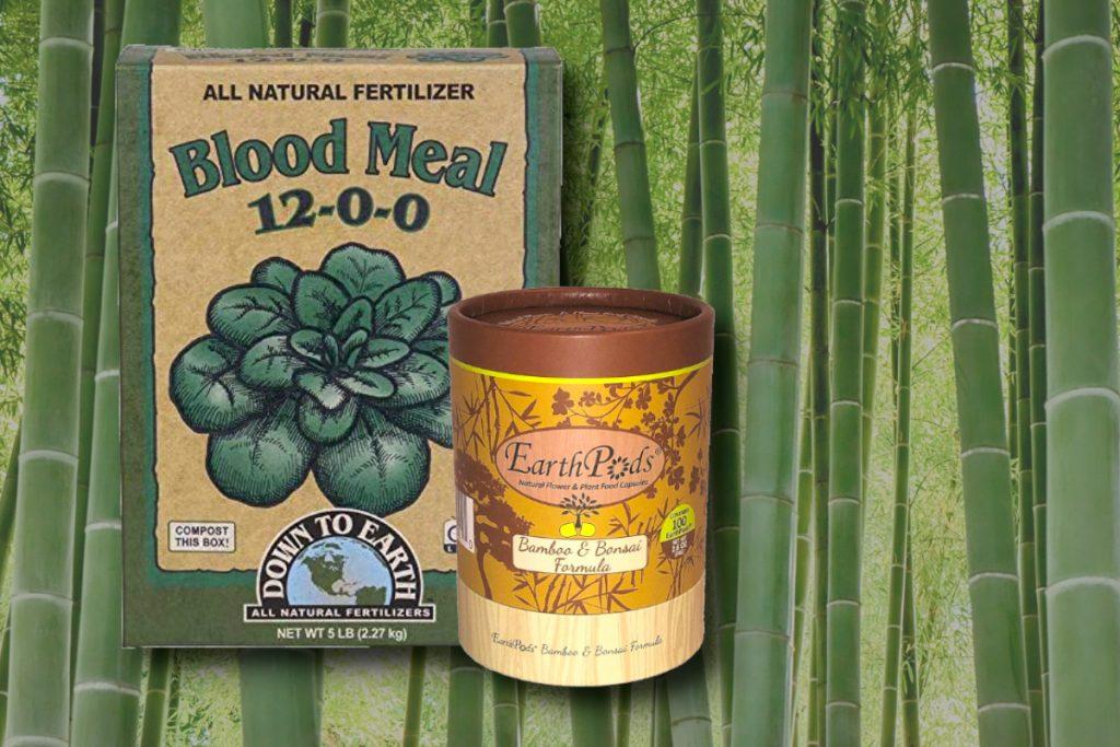 Best Fertilizer For Bamboo
