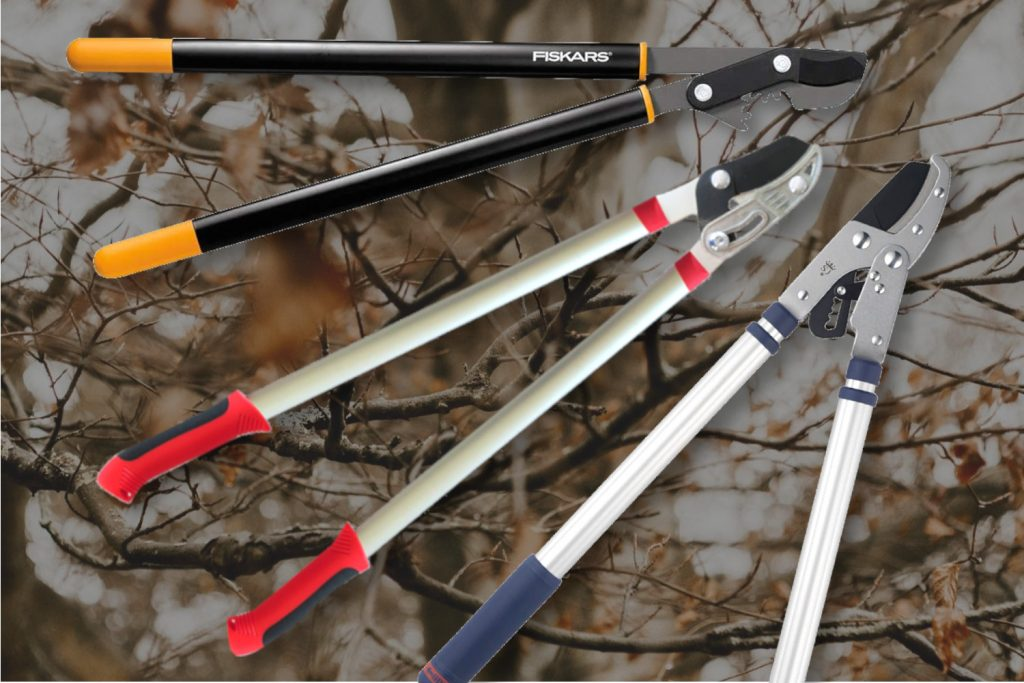 best loppers for pruning trees