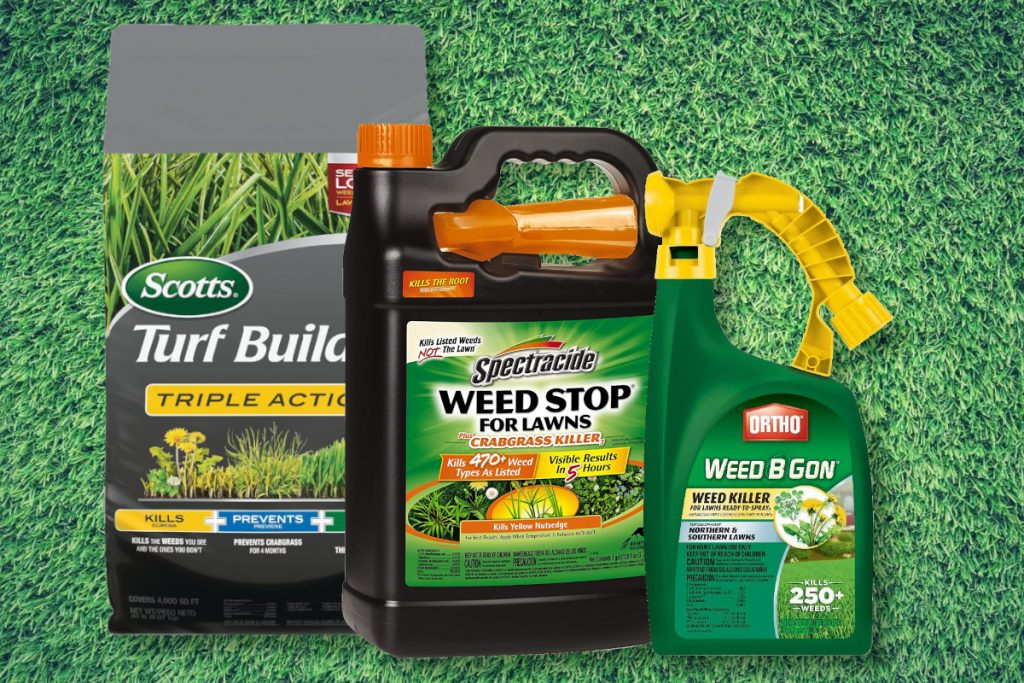 Best Weed Killer For Lawns