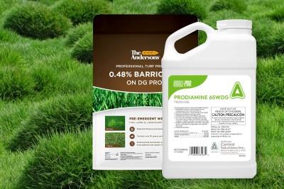 Best Pre Emergent For Zoysia Grass
