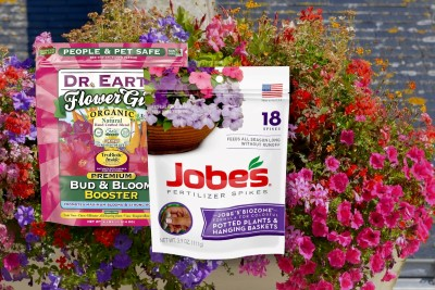 Best Fertilizer For Petunias And Geraniums