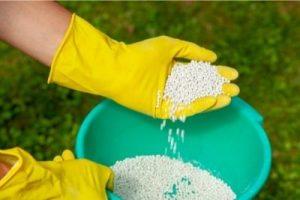 When Is 12-12-12 Fertilizer Best How To Use Triple 12